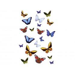 Dekoracja łazienkowa Kleine Wolke Butterfly S