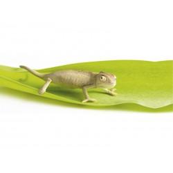 Dekoracja łazienkowa Kleine Wolke Chameleon Slim