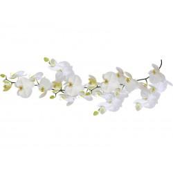 Dekoracja łazienkowa Kleine Wolke Orchid Slim