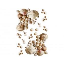 Dekoracja łazienkowa Kleine Wolke Shell L