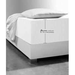 Prześcieradło Fleuresse Comfort XL White