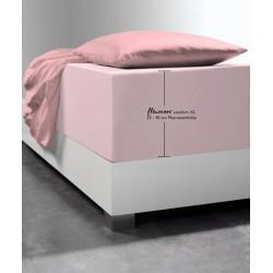 Prześcieradło Fleuresse Comfort XL Rose Light