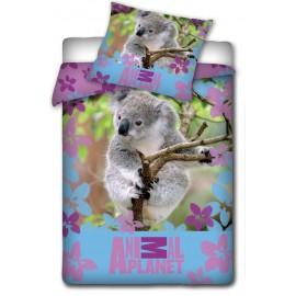 Pościel Animal Planet 160x200 Miś Koala Contra